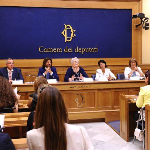 Conferenza stampa per illustrare la fondazione dell'Alleanza Italiana Malatie Rare.